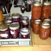 canning-at-rabbit-hollow_p1247964
