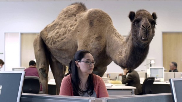 guess what day it is commercial gif
