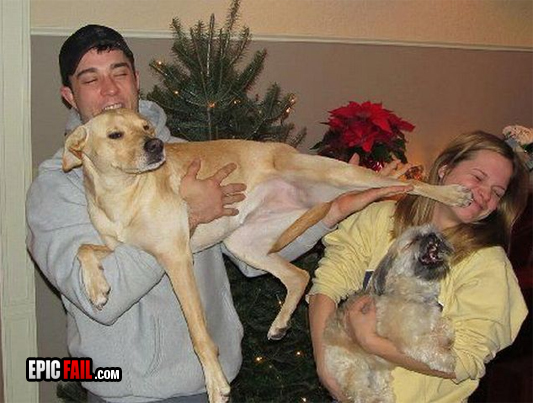 holiday-photo-fail-dog-kick-mouth