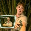 Steve Irwin take bit like a champ