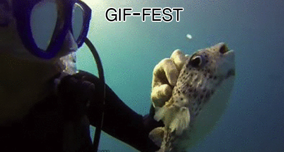 Monday Gif-Fest – September 22, 2014