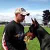 Smartest Doberman Pinscher