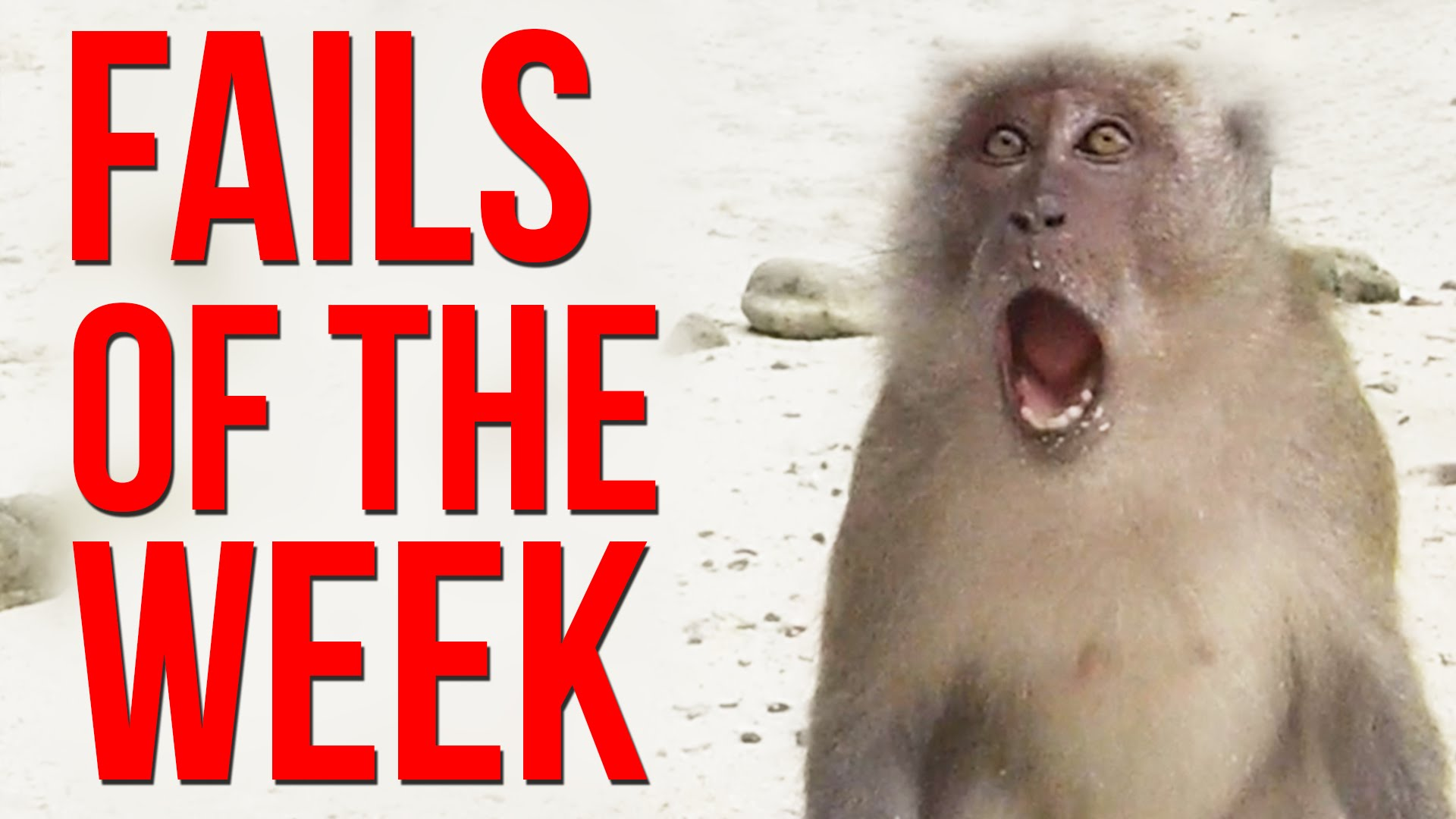 Friday Fails – January 23, 2015