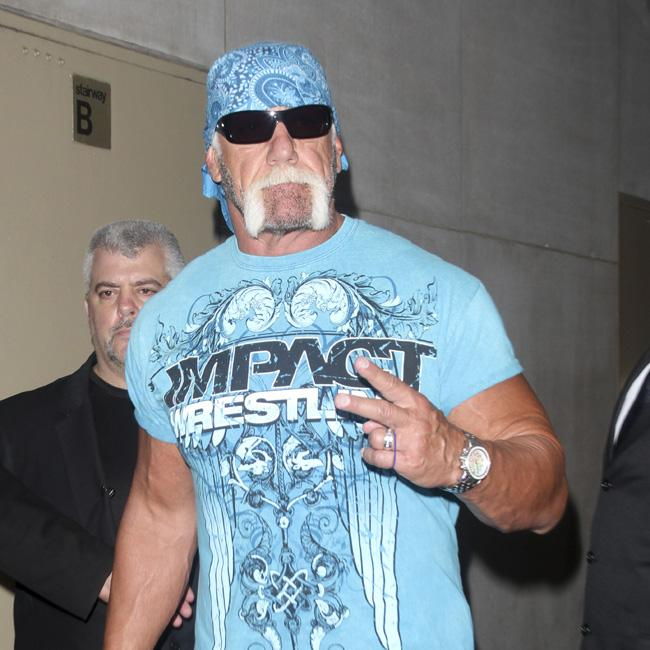 hulk_hogan_defended_by_pals.jpg