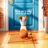The Secret Life Of Pets – Official Teaser