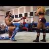 Wrestling proposal