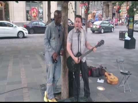 Seal and busker duet Stand By Me in Montreal