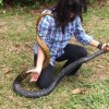 Woman tackles 6ft long snake