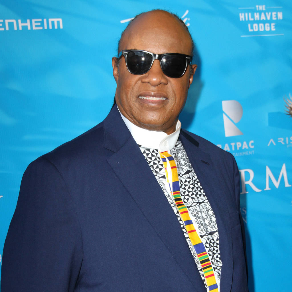 Stevie Wonder 	 © Adriana M. Barraza/WENN.com