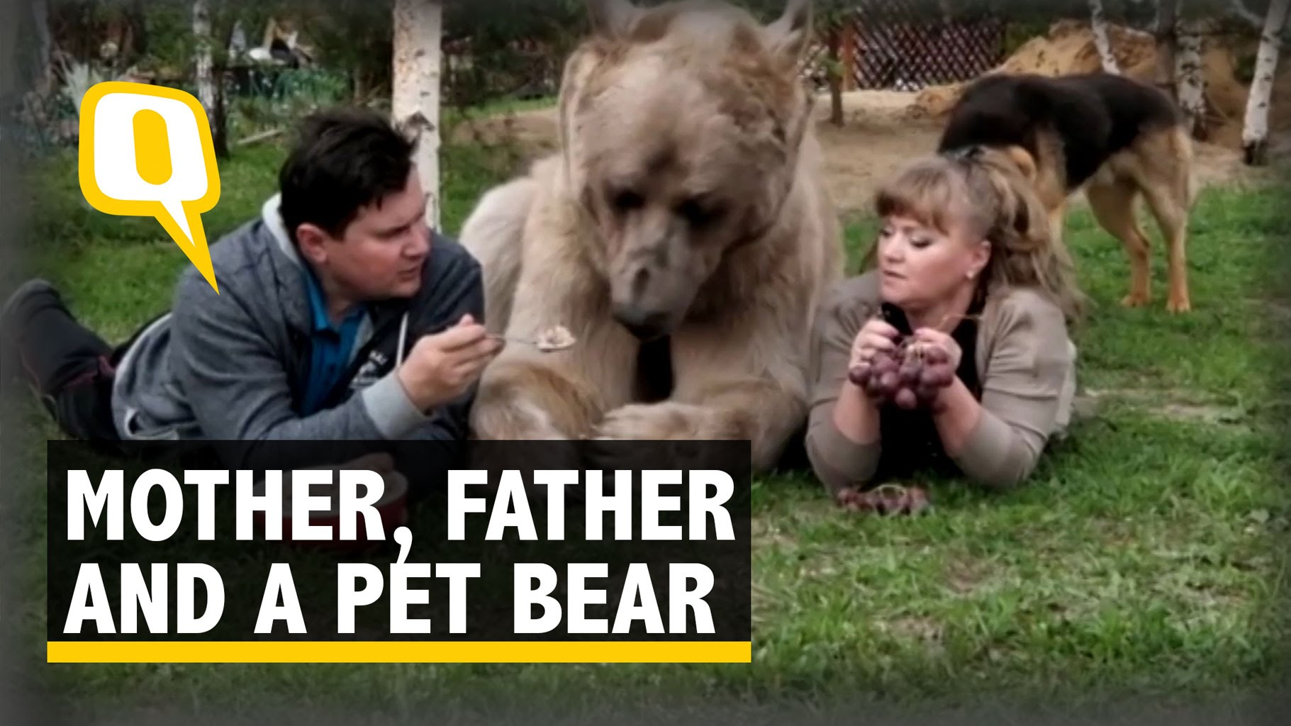 This Russian couple adopted a bear!