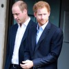 princes_william_and_harry_commission_statue_of_mother_diana.jpg
