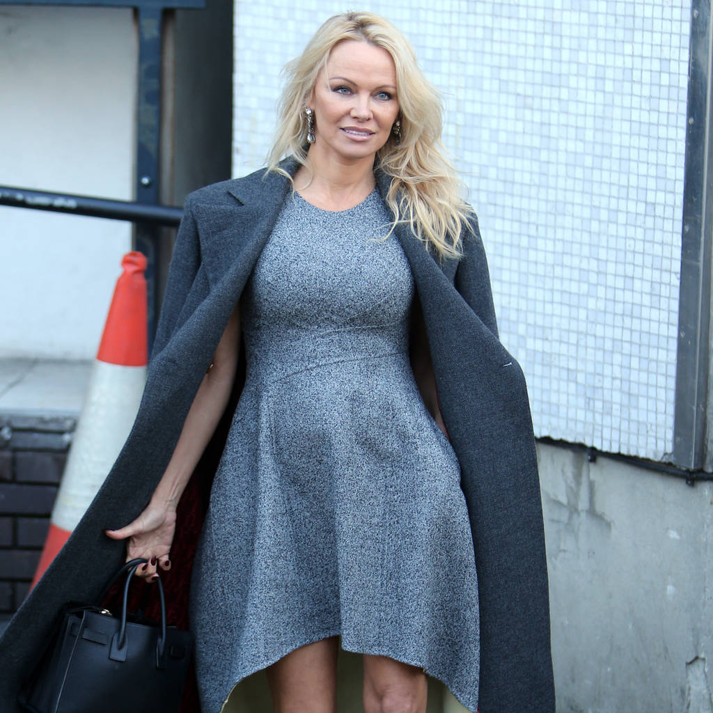 pamela_anderson_planning_to_campaign_for_men_falsely_accused_of_rape.jpg