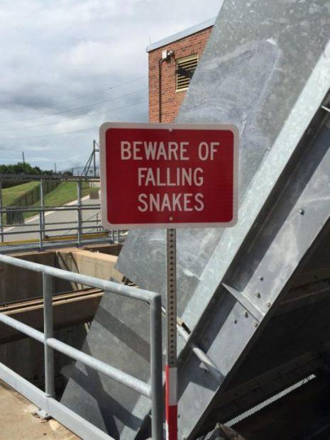 Image result for strange signs